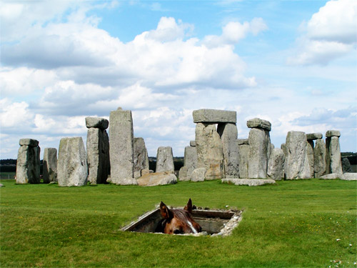 stonehenge_basementhorse.jpg